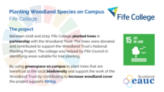 Planting Woodland Species on Campus - Fife College image #2