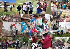 2020 Benefitting Society Winner: Universidad San Ignacio de Loyola - Peru image #3