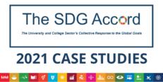 SDG Accord Report 2021 - Case Studies image #1