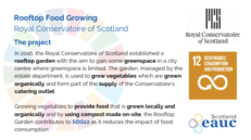 Rooftop Food Growing - Royal Conservatoire of Scotland image #2