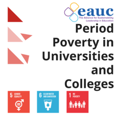 Period Poverty in Universities and Colleges image #1