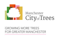 City of Trees image #1