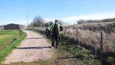 Hedges at SRUC, Elmwood Golf Course image #2