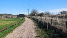 Hedges at SRUC, Elmwood Golf Course image #3