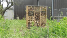 Nest boxes at SRUC, Elmwood Golf Course image #2