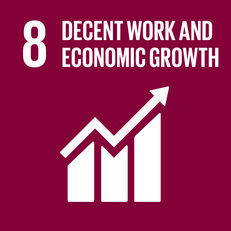 Goal 8 - Decent work and economic growth image #1