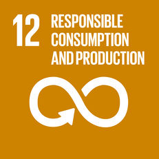 Goal 12 - Responsible consumption and production  image #1