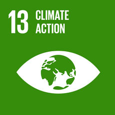 Goal 13 - Climate action  image #1