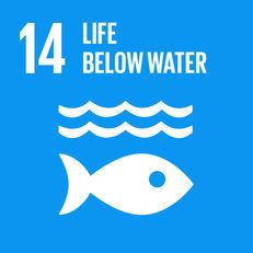 Goal 14 - Life below water image #1