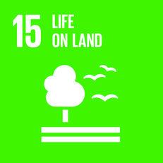 Goal 15 - Life on land image #1