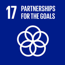 Goal 17 - Partnerships for the goals image #1