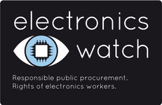 Sustainable Procurement and the SDGs with Electronics Watch Webinar image #1
