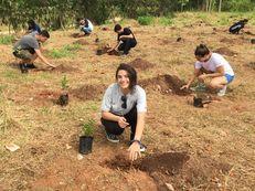 2020 Benefitting Society Finalist: Facens University Center - Brazil image #6