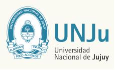 2019 Student Engagement Finalist: Universidad Nacional de Jujuy, Argentina image #2