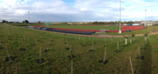 Edge Hill's new Sports Centre development strives to enhance levels of biodiversity image #1