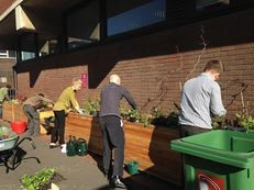 Manchester Metropolitan University - Lunchtime gardening sessions image #1