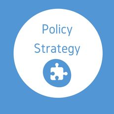 Policy Strategy image #1