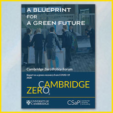 Green Recovery: A Blueprint for a Green Future image #1
