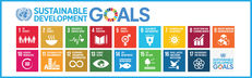 The Sustainable Development Goals (SDGs) in Higher and Further Education: What does this look like?  image #1