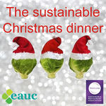 The perfect Christmas dinner - sustainability with all the trimmings! image #1