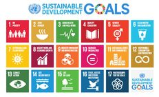 Embedding the SDGs in FHE - Education for Sustainable Development TSN with LfS Scotland image #3
