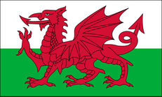 Supporting Wales (English version) image #1